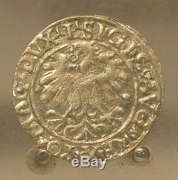 1559 Poland / Lithuania Silver 1/2 Groschen, Old World Silver Coin