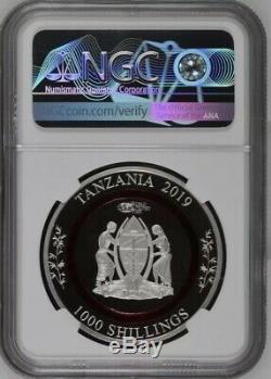 NGC PF70 2019 Berlin world Money Fair Polymer Ring 1oz Silver panda coin COA